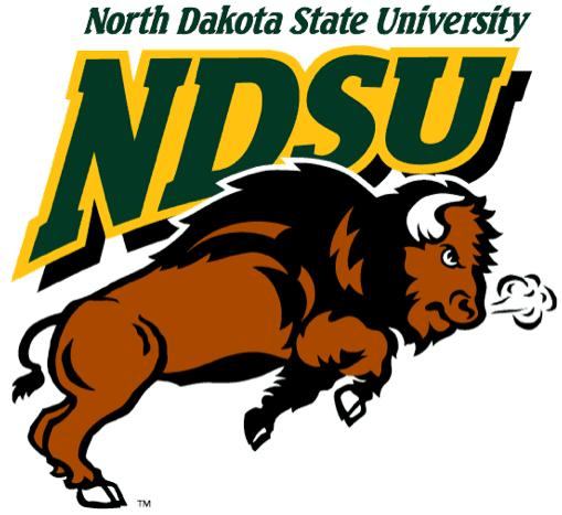 Image result for north dakota state university bison